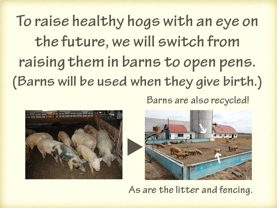 hog raising Continue reading what makes a good harvest: major factors to consider in hog raising home company  the feedpro natural hog feed pellets products display.